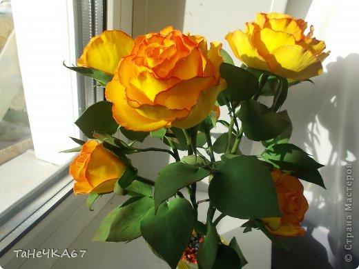 Доброго времени суток! доделала свой цветник.Вроде получился ничего. Рада всем,кто зашел в гости!!!Приятного просмотра!! фото 3