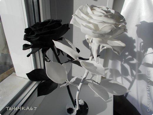 Доброго времени суток! доделала свой цветник.Вроде получился ничего. Рада всем,кто зашел в гости!!!Приятного просмотра!! фото 14
