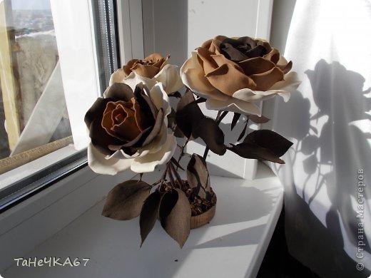 Доброго времени суток! доделала свой цветник.Вроде получился ничего. Рада всем,кто зашел в гости!!!Приятного просмотра!! фото 9