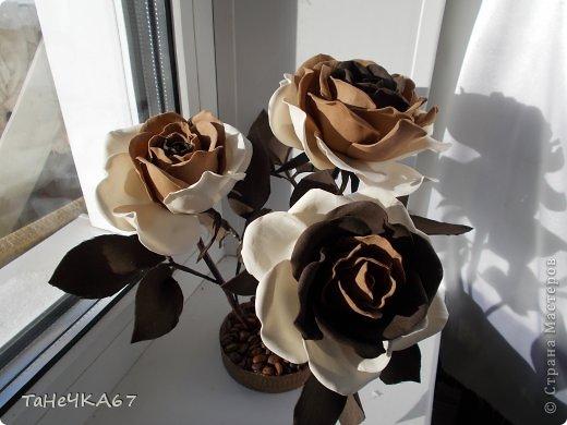 Доброго времени суток! доделала свой цветник.Вроде получился ничего. Рада всем,кто зашел в гости!!!Приятного просмотра!! фото 10