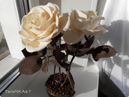 Доброго времени суток! доделала свой цветник.Вроде получился ничего. Рада всем,кто зашел в гости!!!Приятного просмотра!! фото 12