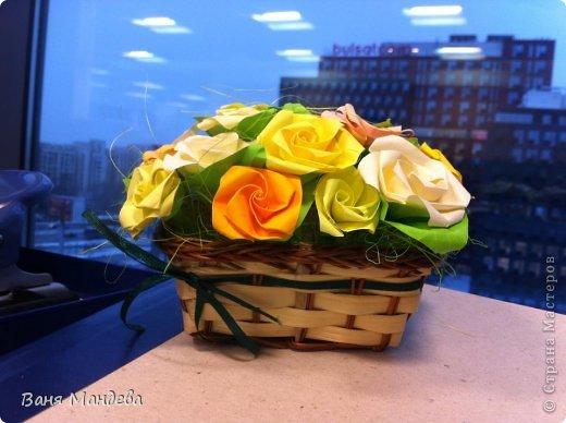 Рози фото 2