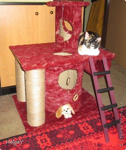 """Такой уголок для любимой кошечки можно сделать своими руками. Во-первых, сохраните свою мебель от кошачьих когтей, во-вторых, такой уголок станет любимым местом для игры и отдыха вашего любимца.  Для такой конструкции, по сравнению с ценами в магазине, от которых у меня потемнело в глазах, столько денег не понадобится. Я использовала разного диаметра трубки, например, картонные бобины, являющиеся основой для намотки упаковочного полиэтилена или др. производственных материалов. Грубая верёвка для обматывания этих трубок, плюшевый материал и несколько болтов и винтиков для скрепления деталей конструкции. Для основы каждого яруса я использовала ДСП. А верёвку приклеивала ПВА клеем. Вот и вся мудрость за мало денег. По собственному опыту могу сказать, что больше ярусов для вашей пумы будет более привлекательным, т.к. это любитель карабкаться как можно выше. Всё зависит от вашей фантазии и диспозиции места. У нас уголок получился около 1 м высотой, после того, как я добавила ещё один столб с """"постелью"""".... ;о) На некоторых фотографиях можете видеть первоначальный вид уголка. Думаю такой подарок вашей любимице очень даже понравиться. :)) фото 5"""