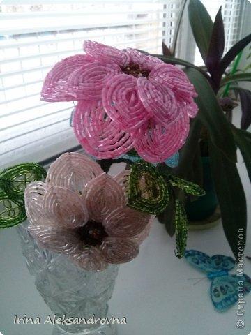 Цветы из бисера! фото 3