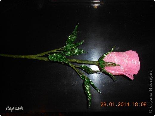 Новая роза в предыдущем стиле. фото 4