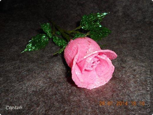 Новая роза в предыдущем стиле. фото 2