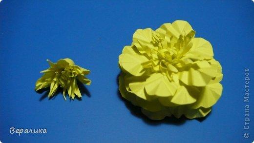 Мастер-класс Поделка изделие Бумагопластика Квиллинг Бархатцы маленькие объемные желтые Бумага Бумажные полосы Проволока фото 14