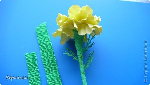 Здравствуйте, дорогие мастерицы и мастера! Ранее я уже рассказывала  вам как сделать бархатцы для картины, смотреть здесь https://stranamasterov.ru/node/627611  . Сегодня я хочу показать вам как сделать маленькие объемные желтые бархатцы для объемной вазочки. Весь МК состоит из 5 частей- всего 21 фото.  Для цветов нам понадобится: -цветная бумага для ксерокса желтого и зеленого цвета; -креповая бумага; -клей ПВА; -проволока; -пинцет. Часть I. фото 18