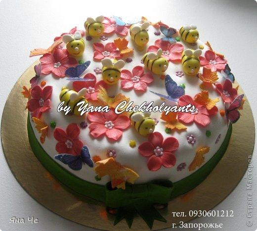 Тортик для дачника фото 4