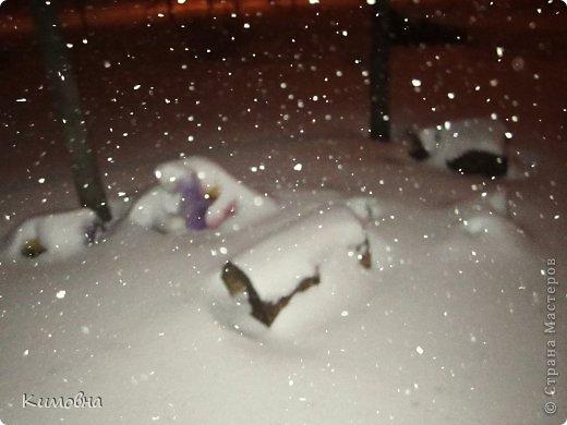 Как мы все просили у зимы снега! Все новогодние праздники прошли при +4 градусах. Какой там уж снег... Но как говорят - бойся желаний, могут исполнится. Практически за 2-3 дня температура за окном упала до 20-23 мороза!!! За сутки до катаклизма выпал снег. Нет, не так - ВЫПАЛ СНЕГ. Если я на ошибаюсь, то такая погода в моем родном Днепропетровске была лет 15-20 назад. Как и полагается порядочному катаклизму он подкрался в самое тихое время - ночью. Проснувшись утром, люди попали из лета в суровую зиму. Чтобы пойти на работу, пришлось сначала в 4:30 утра идти откапывать подъезд. Тихо падает снежок))) фото 4