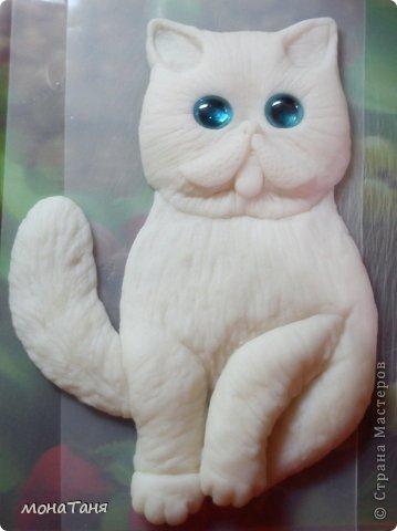 Здравствуйте!!! Уж очень мне понравилась экзотическая короткошерстная порода кошек. Лепила котёнка из ХФ по фото любимчика интернета котёнка Снупи из Китая.  фото 3