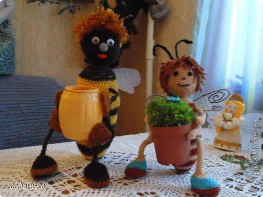 Пчелы Жу-жУ и Тру-тру.