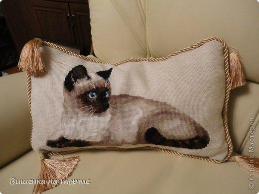 Схема вышивки «Кошка» от