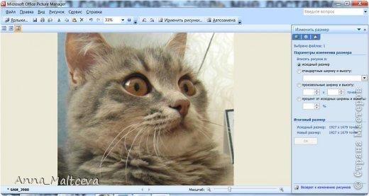 """Здравствуйте, гости! Хотела бы показать еще один способ редактирования фотографий. Этот МК понадобится всем, кто не умеет пользоваться фотошопом, но хочет подписать фотографии своих работ в любой технике и скрапбукинг, мой любимый, и квиллинг и мыло и всё всё всё что угодно.  Для блогов и сайтов используются изображения, которые не должны превышать 2 мб, а также не превышать размер 520*480 пикселей. На нашем любимой сайте """"Страна Мастеров"""" именно такие ограничения и поэтому поводу Ануп делал несколько МК: https://stranamasterov.ru/node/2747 https://stranamasterov.ru/node/1332 Сегодня я хочу рассказать как я уменьшаю, обрезаю и подписываю фотографии. Для этого нужен только компьютер с операционной системой Windows с установленным пакетом офисных программ (Microsoft Office) и интернет. Ну и как альтернатива немного Фотошопа. Я подчеркиваю, что в общем нам не нужны какие-то специфические программы и фотошоп необязателен, не у каждого он есть на компьютере, да и пользоваться им нужно учиться, не всегда всё так просто) А вот """"Офис"""" есть практически у каждого. В своем примере я использовала первую попавшуюся рамочку и цвет текста яркий специально, чтобы научить делать, а красоту и гармонию в своих подписях и рамочках наведите сами))) фото 11"""