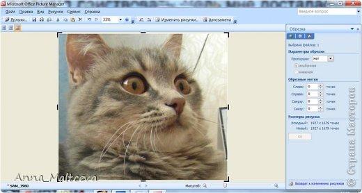 """Здравствуйте, гости! Хотела бы показать еще один способ редактирования фотографий. Этот МК понадобится всем, кто не умеет пользоваться фотошопом, но хочет подписать фотографии своих работ в любой технике и скрапбукинг, мой любимый, и квиллинг и мыло и всё всё всё что угодно.  Для блогов и сайтов используются изображения, которые не должны превышать 2 мб, а также не превышать размер 520*480 пикселей. На нашем любимой сайте """"Страна Мастеров"""" именно такие ограничения и поэтому поводу Ануп делал несколько МК: https://stranamasterov.ru/node/2747 https://stranamasterov.ru/node/1332 Сегодня я хочу рассказать как я уменьшаю, обрезаю и подписываю фотографии. Для этого нужен только компьютер с операционной системой Windows с установленным пакетом офисных программ (Microsoft Office) и интернет. Ну и как альтернатива немного Фотошопа. Я подчеркиваю, что в общем нам не нужны какие-то специфические программы и фотошоп необязателен, не у каждого он есть на компьютере, да и пользоваться им нужно учиться, не всегда всё так просто) А вот """"Офис"""" есть практически у каждого. В своем примере я использовала первую попавшуюся рамочку и цвет текста яркий специально, чтобы научить делать, а красоту и гармонию в своих подписях и рамочках наведите сами))) фото 9"""