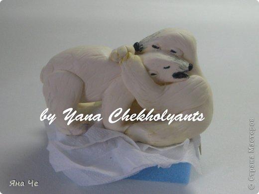 Тортик для стоматолога. Лучшему стоматологу фото 6