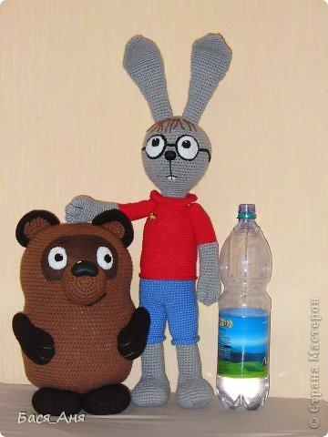 Сегодня мы к вам в гости с Винни Пухом и Кроликом. фото 3