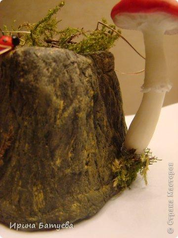 Мастер-класс Поделка изделие Папье-маше Пенечки из папье маше Бумага Краска Материал природный Фарфор холодный фото 32
