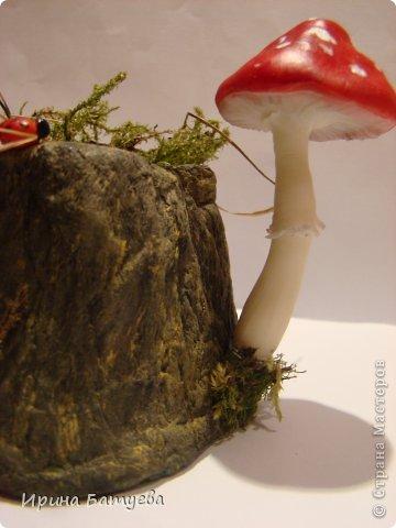 Мастер-класс Поделка изделие Папье-маше Пенечки из папье маше Бумага Краска Материал природный Фарфор холодный фото 1
