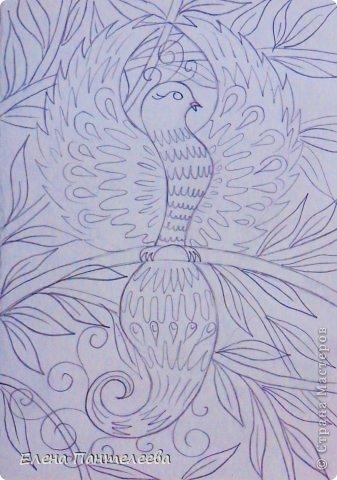 Жар-птица. Уровень 2-3 класс. фото 20