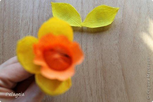 Мастер-класс Свит-дизайн 8 марта Моделирование конструирование Нарциссы МК Бумага гофрированная фото 11