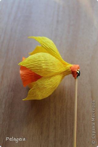 Мастер-класс Свит-дизайн 8 марта Моделирование конструирование Нарциссы МК Бумага гофрированная фото 13