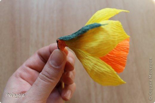 Мастер-класс Свит-дизайн 8 марта Моделирование конструирование Нарциссы МК Бумага гофрированная фото 14
