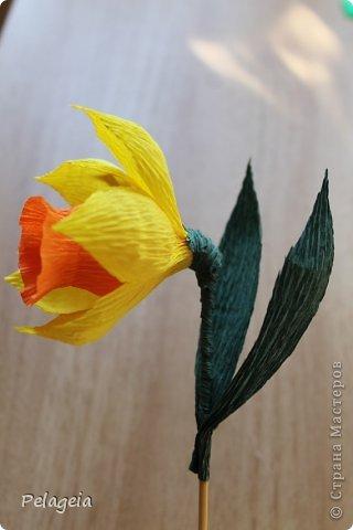 Мастер-класс Свит-дизайн 8 марта Моделирование конструирование Нарциссы МК Бумага гофрированная фото 16