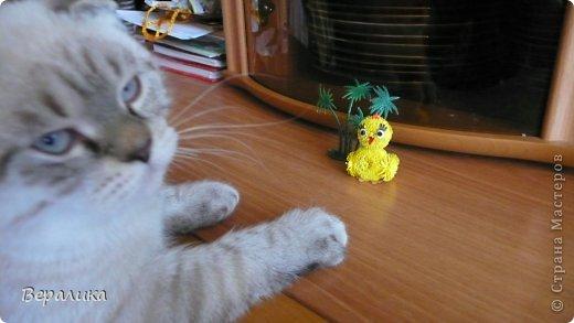 Насмотревшись на цыпленка Любовь Грасмик  http://stranamasterov.ru/node/720168  и  http://stranamasterov.ru/node/721406   , я решила сотворить своего цыпленка, тем более, что  приближается Пасха! А он сразу под пальмами на солнышке погреться захотел. Любушка, большое спасибо Вам за Вашего цыпленочка!!! фото 5