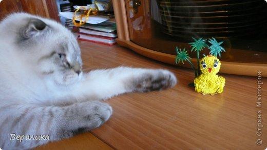 Насмотревшись на цыпленка Любовь Грасмик  http://stranamasterov.ru/node/720168  и  http://stranamasterov.ru/node/721406   , я решила сотворить своего цыпленка, тем более, что  приближается Пасха! А он сразу под пальмами на солнышке погреться захотел. Любушка, большое спасибо Вам за Вашего цыпленочка!!! фото 6