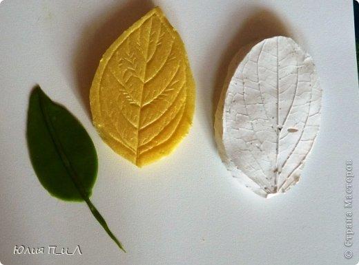 Мастер-класс Поделка изделие Лепка Цветущий кизил для букета панно или торта  Тесто соленое Фарфор холодный фото 18