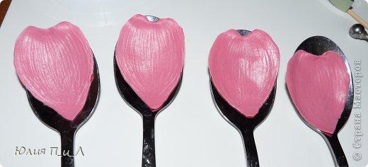 Мастер-класс Поделка изделие Лепка Цветущий кизил для букета панно или торта  Тесто соленое Фарфор холодный фото 12