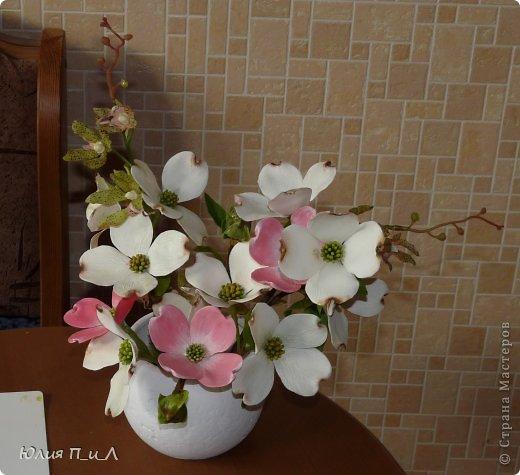 Сегодня я вам покажу, как сделать цветущий кизил, не тот, что цветет в некоторых  садах бывшего постсоветского пространства,  а калифорнийский (Flowering Dogwood (Córnus Flòrida)). Давно на него заглядывалась, и сначала в попытке работы с соленым тестом сделала птичек на кизиле по известной картинке  Каролин Shores Райт. И вот руки дошли и до букетных цветов.Но обо всем по порядку. фото 19