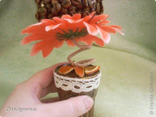 Здравствуйте дорогие мастера и мастерицы! Скоро 8 марта и наделались у меня вот такие цветочки...кофеюшные подарочки. Вдохновила меня на такие подарочки Ирина, вот ее работы: https://stranamasterov.ru/node/730262 только у нее монетки, а у меня кофе... фото 6