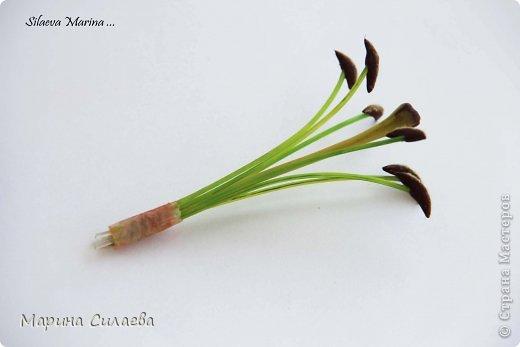 Мастер-класс М К Как я делаю тычинки для лилии   фото 14