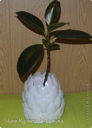 Можно посадить цветок... фото 1