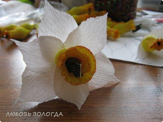 Мастер-класс Свит-дизайн 8 марта Моделирование конструирование Нарциссы Бумага гофрированная Продукты пищевые фото 15