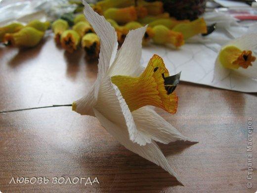 Мастер-класс Свит-дизайн 8 марта Моделирование конструирование Нарциссы Бумага гофрированная Продукты пищевые фото 10
