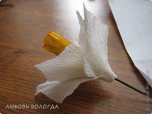 Мастер-класс Свит-дизайн 8 марта Моделирование конструирование Нарциссы Бумага гофрированная Продукты пищевые фото 9