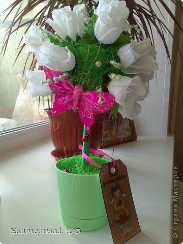 Итак, эти работы  сделала в подарок воспитателям в группу своей дочери,  девчонкам - коллегам понравилось, были довольные!!!! В общем топики сделаны из салфеток, сизали и миксованный - сизаль и салфетки - все вместе, шпагатом обмотала баночки от глины, добавила декорчик - божьи коровки и бабочки и конечно бирочки!!!))) фото 2