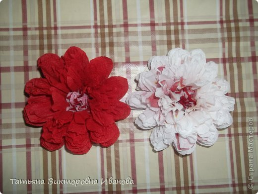 Всем доброго дня суток! Сегодня я вам покажу как делаются такие цветочки. Может кто- то до меня уже такие цветы показывал, но я такие не встречала нигде. фото 3