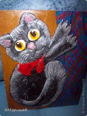 Мой котейка висит на шторочке фото 1