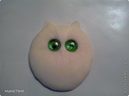 Совеныш - глазастик фото 3