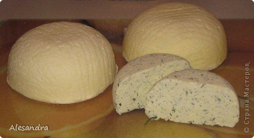 Кулинария Мастер-класс Рецепт кулинарный Сулугуни Для любителей сыра Продукты пищевые фото 1