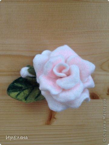 Роза сваляна из шерсти в технике валяние на каркасе. Вот по этому МК https://stranamasterov.ru/node/559103. Все лепестки валялись отдельно, а потом соединялись в цветок. фото 2