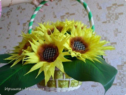 Подсолнух с ананасами фото