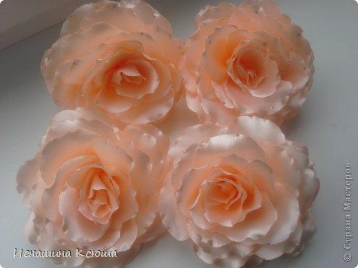 в  СМ  есть мк такой розы, попробовала и меня опять понесло.    лента 5см  - 25 лепестков    d-10см .