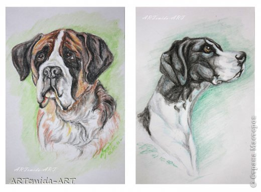 и живопись Портреты собак