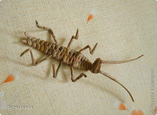 Поделка изделие Плетение Тараканище Бумага газетная Трубочки бумажные фото 13