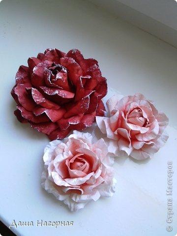 Мастер-класс Поделка изделие Бумагопластика Плетение мк по розам из акварельной бумаги Акварель Бумага газетная Клей фото 1